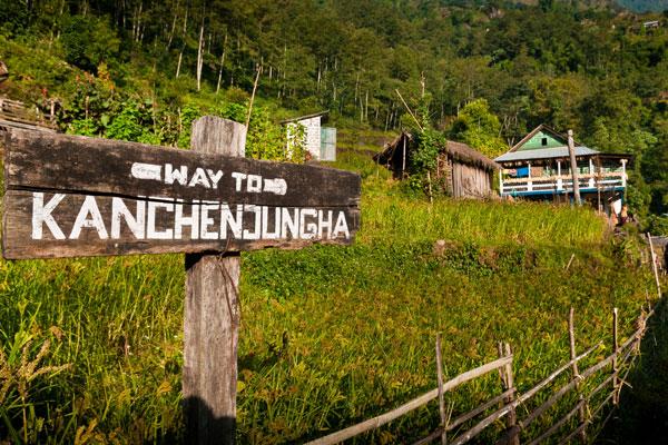 Kanchenjunga Base Camp Lodge Trek